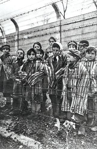 27 janvier 1945 Libe_auschwitz_enfants313159