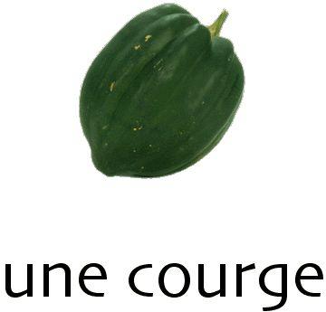 courge.jpg